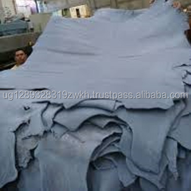 Wet Blue Cow Hide / Salted cow hides