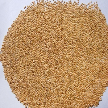 yellow millets fish meal