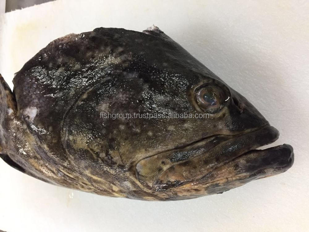 Frozen Grouper Heads