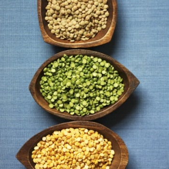Whole Green Lentils, Organic Lentils, Canadian Lentils (Eston, Laird, Richlea Varities)