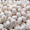 /product-detail/fresh-garlic-dehydrated-garlic-black-garlic-fried-garlic--62000657655.html