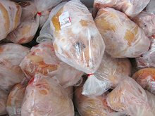 HALAL Frozen Whole Chicken / Chicken Feet, Chicken Wings / Paws etc