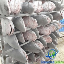 Oman Origin Frozen Catfish With Reasonable Price