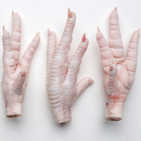 Brazilian Grade A Halal Frozen Chicken Paws