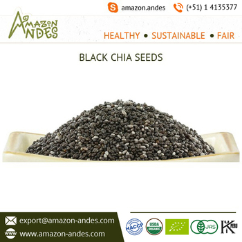 Bulk Exporter of Black Chia Seeds
