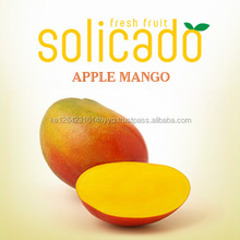 Juicy Apple Mango from Kenya