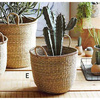 Handicraft weaving seagrass basket tall/ seagrass basket planter