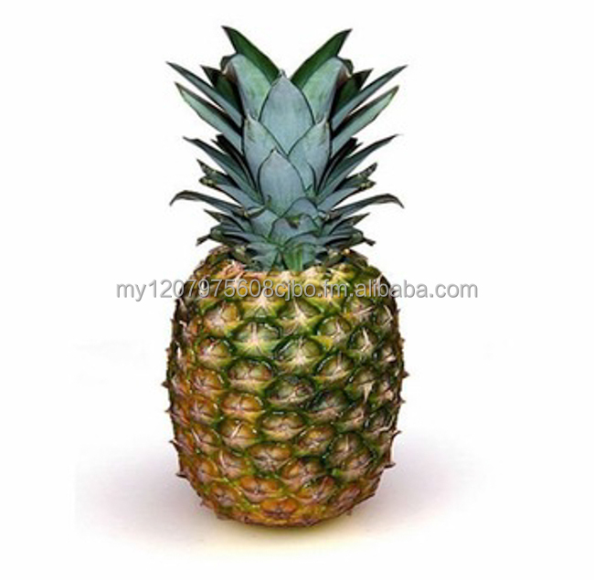 MD2 Pineapple Tropical fruit