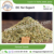 Hot Selling Fennel Seeds/ Seed Fennel at Affordable Price