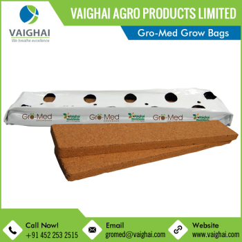 Trusted Manufacturer of Coconut Coir Fibre Grow Bags for Various Applications