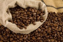 Coffee Beans Arabica and Robusta and Civet Coffee (Kopi Luwak