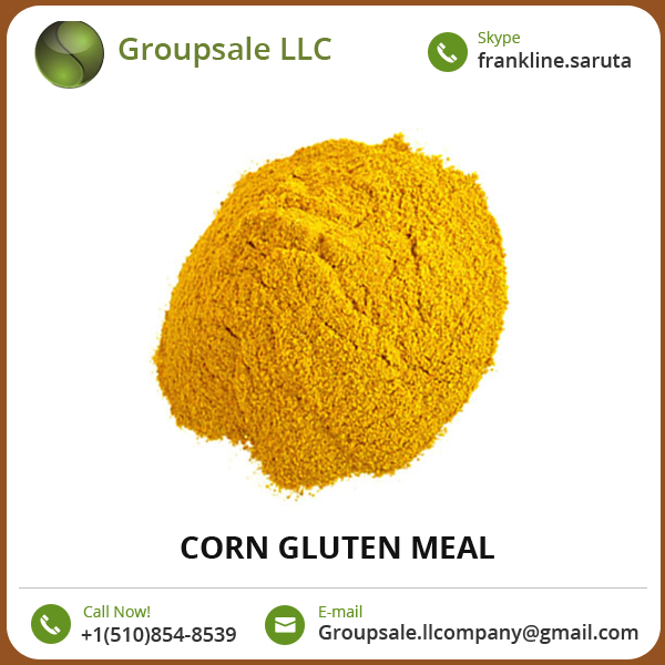 Trusted Supplier of High Purity Fresh and Organic Corn Gluten Meal at Competitive Rate