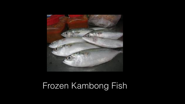 Seafood Frozen Product
