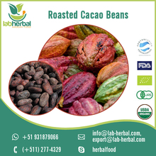 Organic Roasted Cacao Beans/Roasted Cocoa Beans for Food Industry