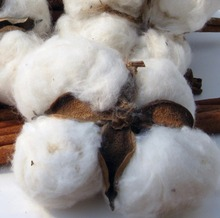 High Quality Grade A 100% Natural Raw Cotton For Sale