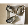 New arrival Japanese superior quality oyster shell picture