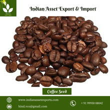 New Green Coffee Seed Extract with best quality and low price