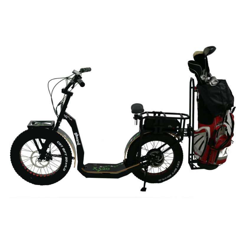 GreenBoard scooters - Electric scooter for golf: eYf 20 500 Platinum: NEW TECHNOLOGY Brushless engine, geared, 500 Watt