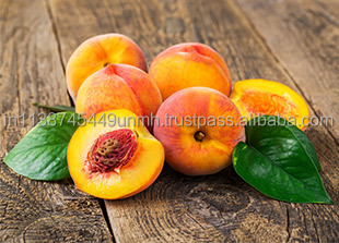 PEACH KERNEL OIL TRUSTED SUPPLIER INDIA