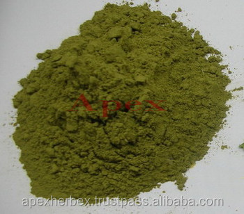 Moringa Leaf Powder ( Moringa Olifera powder ) / Moringa Leaves
