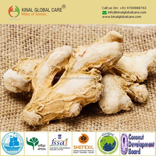 Dried Ginger Gingembre T cut Granules
