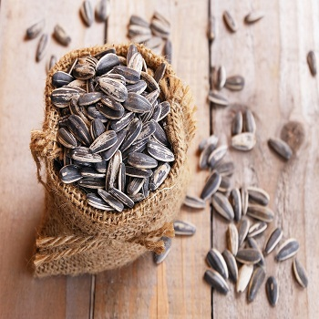 Sunflower seeds for Human consumption