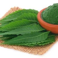 Neem Leaves Powder 100 Pure And