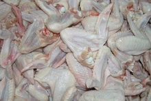 Best Premium Quality Frozen Chicken Wings For Exports