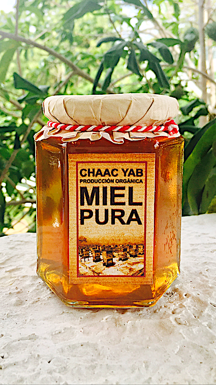 Yucatecan Raw Honey