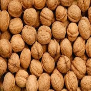 New crop walnuts whole with shell/walnut kernels for sale