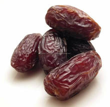 Tunisian Noor Dates palm for sale