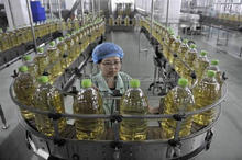 Double Refined Refined Palm Oil,,Refined Soybean Oil Refined sunflower oil hot export