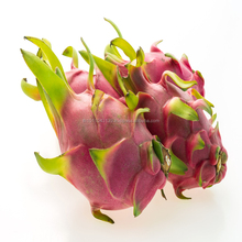 Fresh Dragon fruit RED/WHITE for Sale Thailand