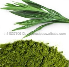 Pandan leaves Powder (100% Natural - Organic Cultivation) (Premium Product of Thailand)