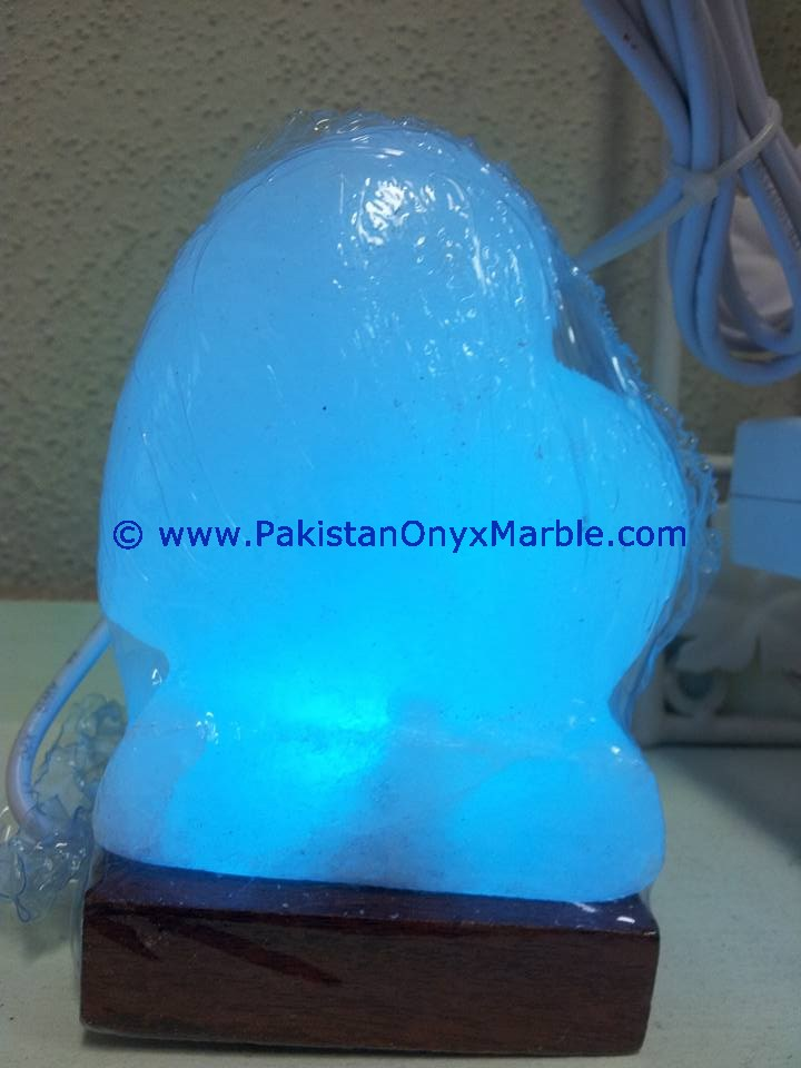 NEW HIMALAYAN USB HEART SALT LAMPS