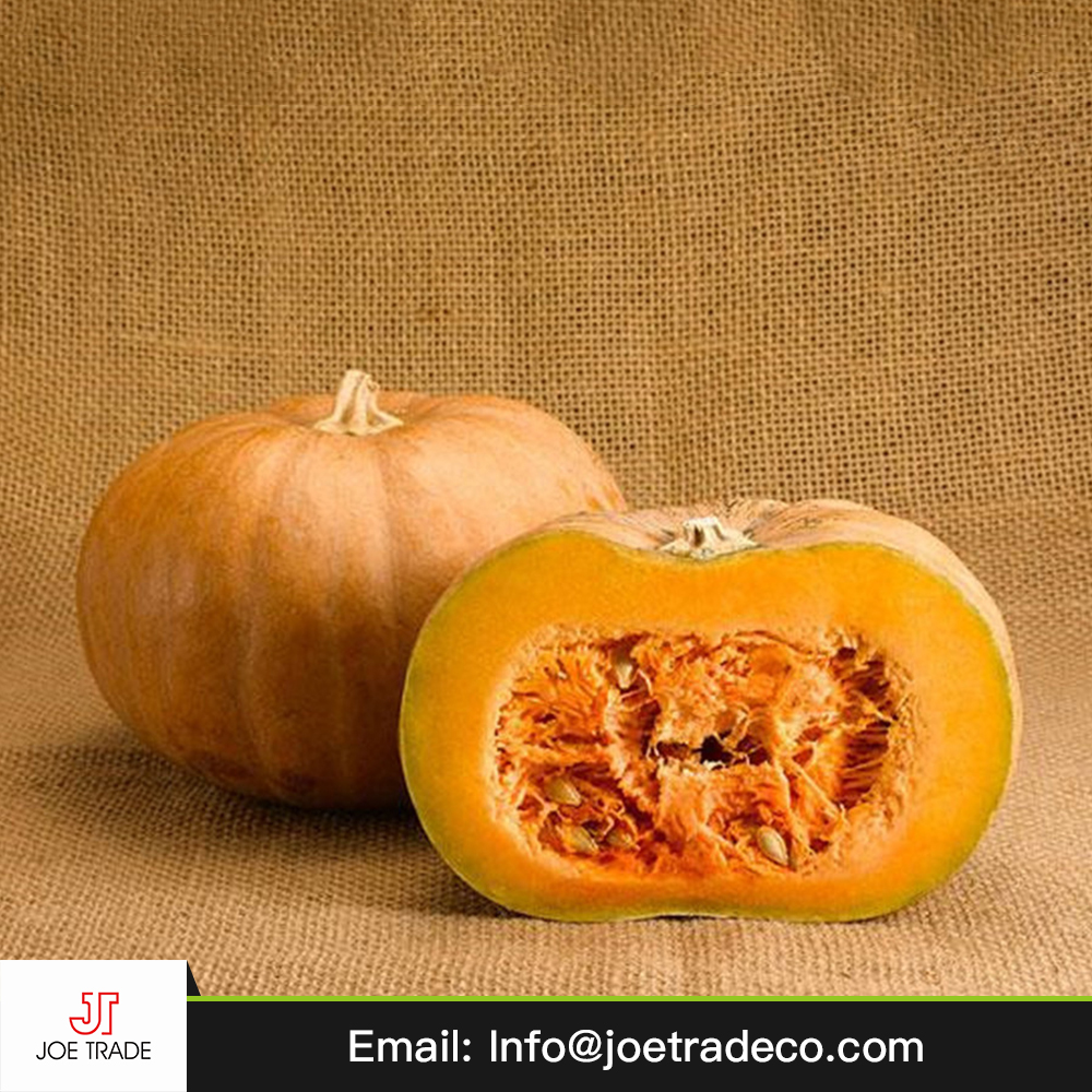 2017 high quality vegetable pumpkin for wholesale