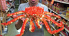 Live Red King Crabs /Frozen King Crab
