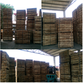 TIMBER FOR PALLET/ACACIA SAWN TIMBER/ACACIA TIMBER
