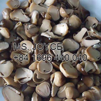 Canned Straw Mushroom in hight quality for export