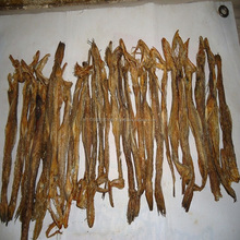 Best Price and First Quality Dried Bombay Duck Fish