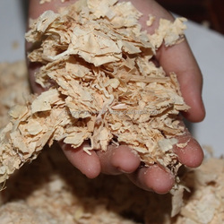 WOOD SHAVINGS FOR CATTLE BEDDING CHEAP PRICE!!