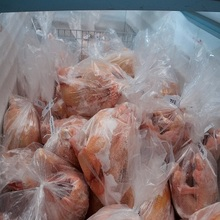 Naturally fed Grade A Frozen Whole Turkey and Turkey Parts for Sale with Top Quality
