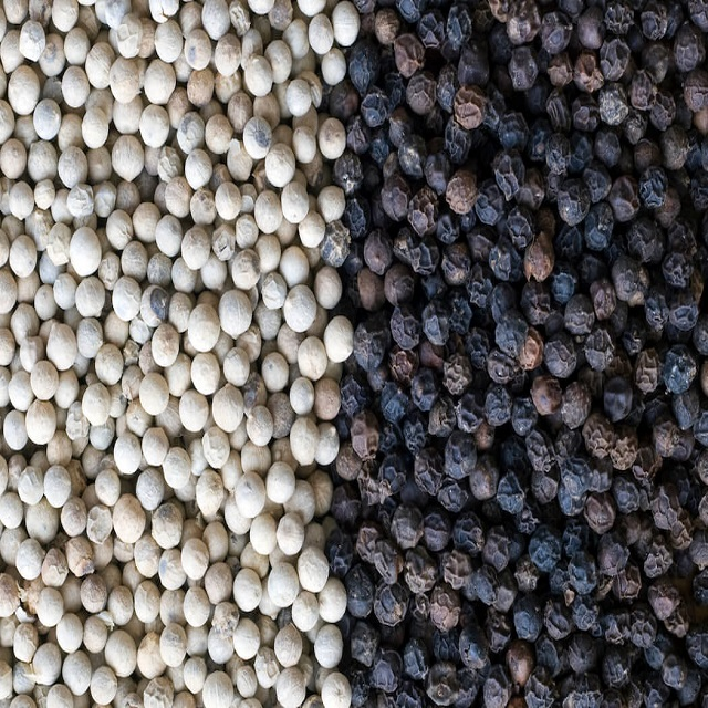 Hight Quality Black Pepper/White Pepper Spices