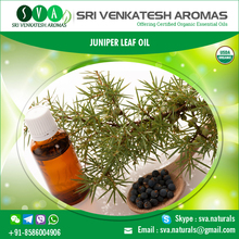 Top Quality Natural Juniper Leaf Oil at Competitive Price