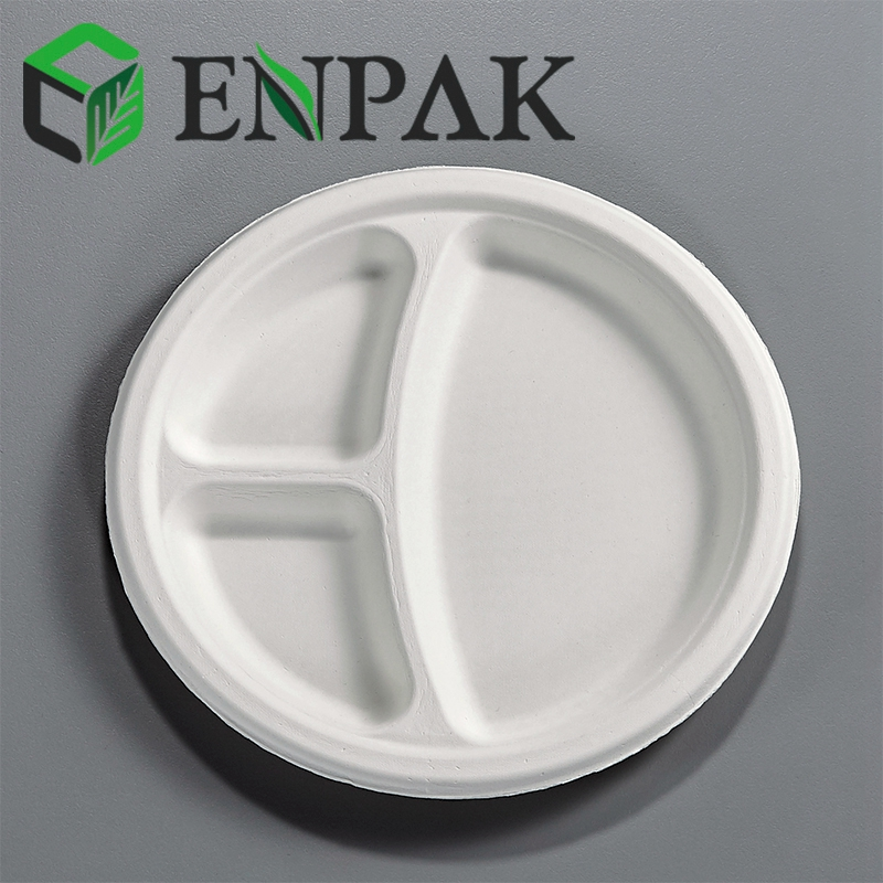 Disposable Convenient Usable Picnic 9 inch Food Plate