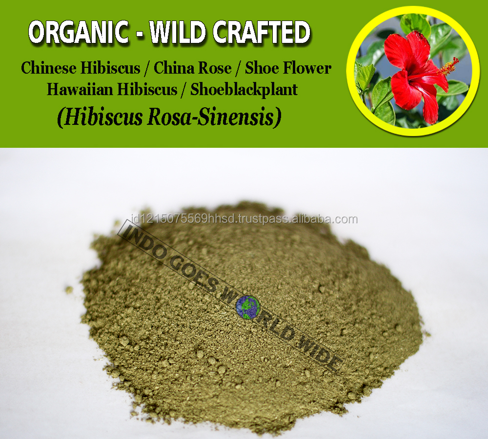 WHOLESALE Chinese Hibiscus Rosa Sinensis China Rose Shoeblackplant Shoe Flower Organic Wild Crafted Herb