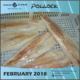 High Quality Pollock Fish from Russia Recent February catch