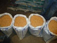 specifications of yellow maize with best quality