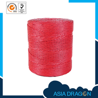 Agricultural Packing Baler Rope Twine Making