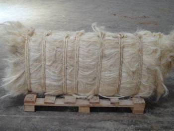 High Quality UG and SSUG Natural raw sisal fiber / sisal fibre